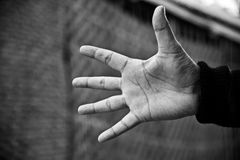 Man showing his hands with fingers. A man is showing his hands with five fingers isolated unique photo royalty free stock photos