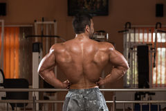 Man Showing His Well Trained Back Stock Photography
