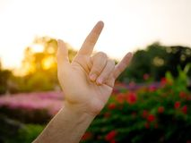 A man showing I love you hand sign language. Over colorful garden at sunset stock photography