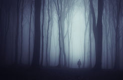 Man silhouette in dark haunted forest with fog Stock Images