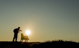 Man silhouette giving bread to stray dogs Royalty Free Stock Photography