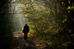 Man silhouette walking on the autumn royalty free stock images