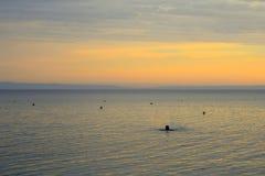 Man simning i det lugna Aegean havet på soluppgång Arkivfoton