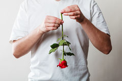 Man with single red rose Royalty Free Stock Photography