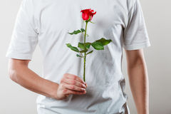 Man with single red rose Royalty Free Stock Image
