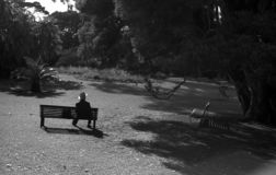 Man on bench stock images