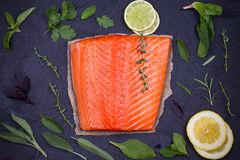 Man sits on the edge of cliff enjoying sea view, horizontal. Fresh raw salmon fillet with lemon, lime, sage, mint, spinach, cilantro, thyme and rosemary. Healthy Stock Images