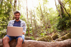 Man Sits On Tree Trunk In Forest Using Laptop Computer Stock Images