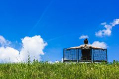 Man sitting on a bench atop grass hill Stock Photography