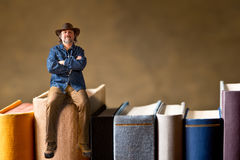 Man sitting on the books Royalty Free Stock Image