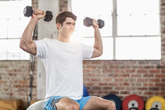 Man sitting on a bossu lifting dumbbells Royalty Free Stock Images