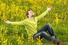 Man sitting in a flower field Royalty Free Stock Images