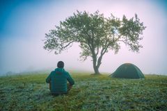 Man sitting on a frozen meadow under the lonely tree Royalty Free Stock Photos