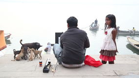 Man sitting at ghat of Ganges with little girl and puppies aside. stock video