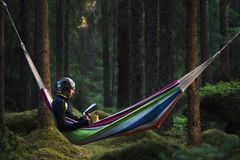 A man sitting in a hammock in a pine forest and reading a book stock photos