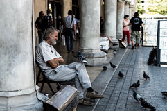 Man sitting on a market in Cracow and playing with pigeons Stock Images