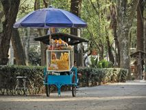 Man sitting next to street food cart with snacks and sweets in `Parque Mexico` royalty free stock photography