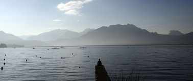 Man sitting on pontoon lake annecy Royalty Free Stock Photo