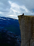 Man sitting on Pulpit Rock Preikestolen Norway Royalty Free Stock Photography