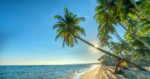 Man sitting reading book beside coconut palm trees at tropical beach. Mui Ne, Vietnam - April 21, 2018: Man sitting reading book beside coconut palm trees at stock photo