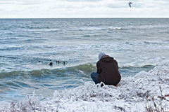 A man sitting on the shore of the Baltic Sea in winter. Stock Images