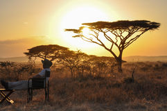 Man sitting at sunset. Man sitting in the park at sunset Serengeti in Africa Stock Photos