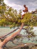 Man sitting on tree - Phaselis bay - Çamyuva, Kemer, coast and beaches of Turkey Stock Image