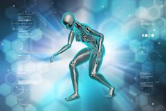 Man Skelton. 3d illustration of Man Skelton royalty free stock photo