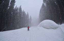 A man  ski on the forest trail,Bukovel Stock Photo