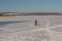 Man skiing. Bright frosty winter day. Frozen River Volga. Man skiing Stock Image