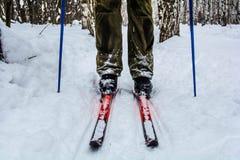 Man skiing Royalty Free Stock Photography