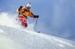 Man skiing powder snow in Austria royalty free stock images