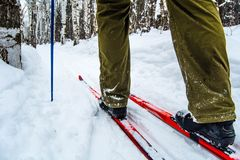 Man skiing Royalty Free Stock Photo