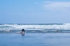 Man skim boarding on longbeach stock image