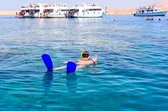 Man skin diving in the ocean Stock Photo