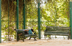 Man sleeping on park bench in gurgaon. Gurgaon, India; 23rd May 2015: Man sleeping on a park bench in the shade of some plants. The summer heat has really hurt Royalty Free Stock Photo