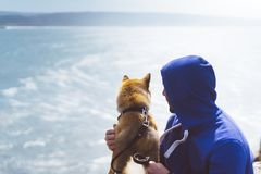 Man with small golden japanese shiba inu dog sitting togetherness on a mountain and looking at blue sea horizon, friends on relax stock photos