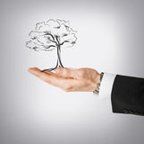 Man with small tree in his hand Royalty Free Stock Images