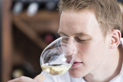 Man smelling a glass of white wine Royalty Free Stock Images