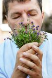 Man smelling lavender Stock Photo