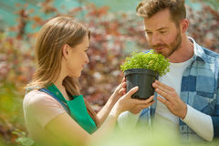 Man smelling potted plant Stock Photo