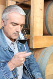 Man smelling red wine Royalty Free Stock Photos