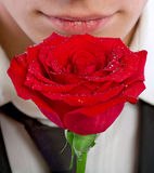 Man smelling a rose Royalty Free Stock Photography