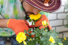 Man smelling the rose flower Stock Photos