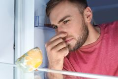Man smelling stinky stale cheese. In refrigerator stock photos