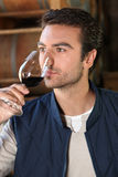 Man smelling wine Royalty Free Stock Images