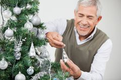 Man Smiling While Decorating Christmas Tree Royalty Free Stock Images