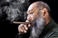 Man smoking cigar Stock Images