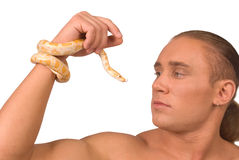 The man and snake royalty free stock photography