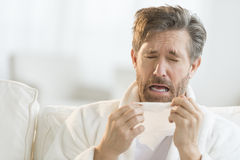 Man Sneezing Into Tissue. Mature man sneezing into tissue on sofa at home Royalty Free Stock Photography